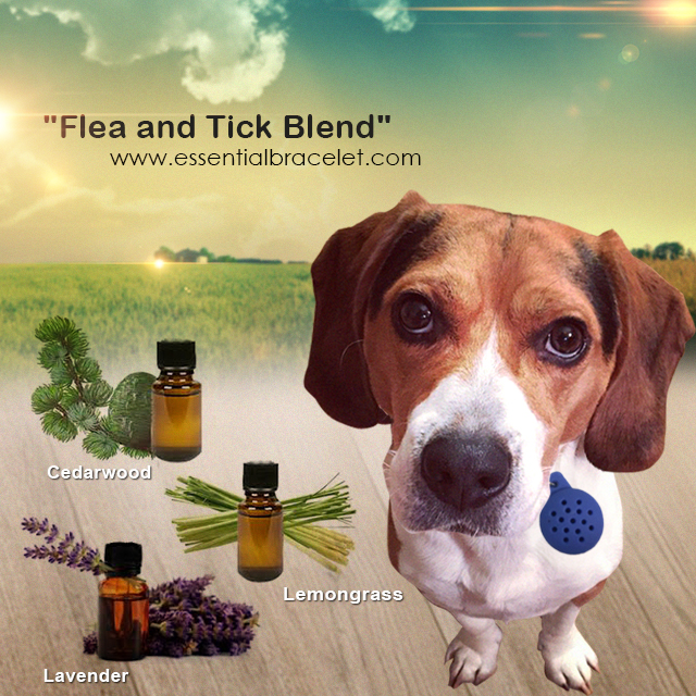 Flea And Tick Essential Oil Blend For