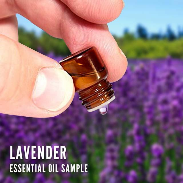 Lavender essential oil (sample)