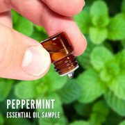 Peppermint essential oil (sample)