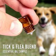 Tick and flea repellent with an essential oil sample bottle
