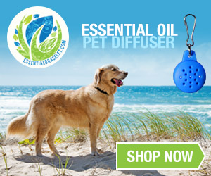 Essential Bracelet Pet Diffusers (Dog on beach)