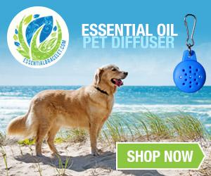 Essential Bracelet Pet Diffusers (Dog on beach)